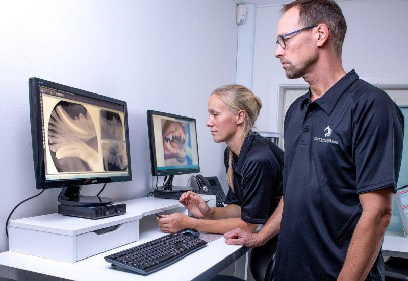 Vurdering af tandrøntgenbilleder